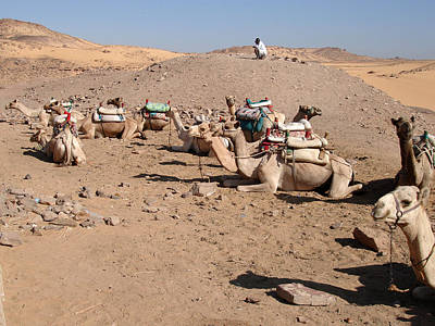 Photograph - Nubian Parking Lot by Richard Deurer