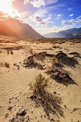 Photograph - Nubra Valley Sand Dunes by Alexey Stiop