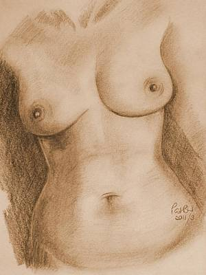 Proportions Drawing - Nude Female Torso - Ppsfn-0002-in Sepia by Pat Bullen-Whatling