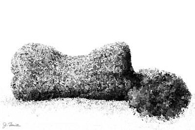 Photograph - Nude In Repose No. 3 by Joe Bonita