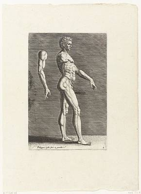 Drawing - Anatomical Drawing Of Nude Man Walking To The Right by R Muirhead Art