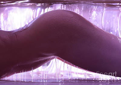 Photograph - Nude Woman Body Covered In Sticky Slimy Liquid Art Photo Print by Oleksiy Maksymenko