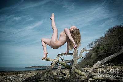 Photograph - Nude Woman On Fallen Tree by Clayton Bastiani