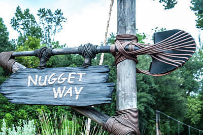 Photograph - Nugget Way by Pamela Williams