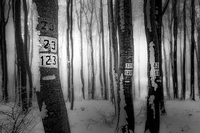 Photograph - Numbers 123 by Plamen Petkov