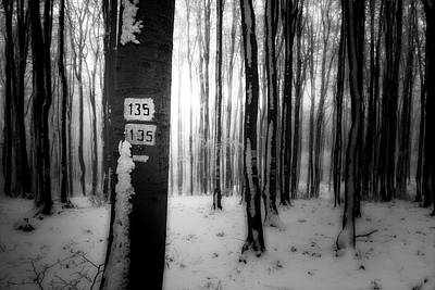 Photograph - Numbers 135 by Plamen Petkov