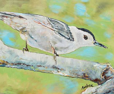 Nuthatch #1 Art Print by Amber Foote