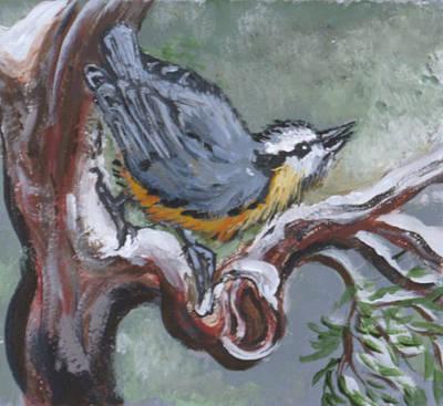 Painting - Nuthatch In Cedar by Dawn Senior-Trask