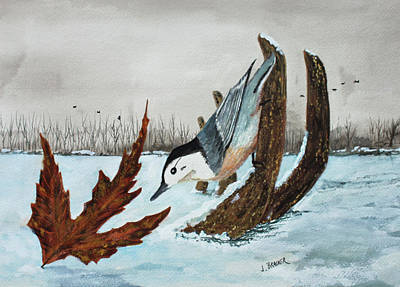 Painting - Nuthatch On Antler by Jack G Brauer