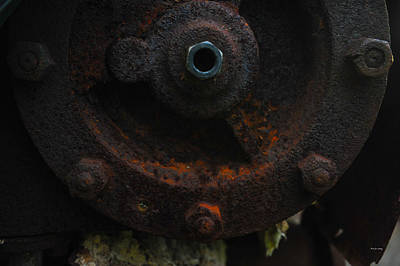 Photograph - Nuts And Bolts by Randi Grace Nilsberg