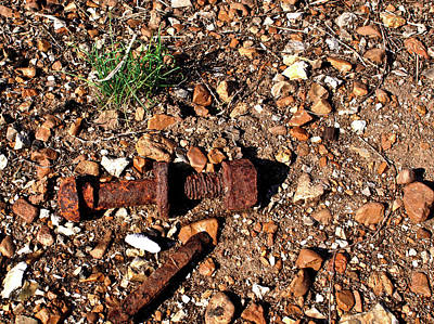 Nuts And Bolts Rusted Art Print by Douglas Barnett
