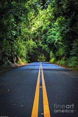 Photograph - Nuuanu Pali Drive by Mitch Shindelbower