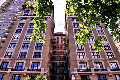 Photograph - Nyc Building With Tree Overhang by Matt Harang