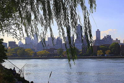 Photograph - Nyc Skyline- A View From Socrates  Sculpture Park by Dora Sofia Caputo Photographic Design and Fine Art