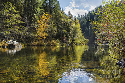 Photograph - Nye Creek Flyfishing by Randy Wood