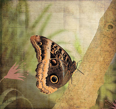 Side View Mixed Media - Blue Morpho Butterfly Side View by Rosalie Scanlon