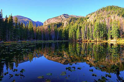 Photograph - Nymph Lake Reflections by Greg Norrell