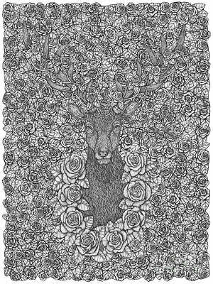 O Deer Portrait With Roses Hand-drawn Art Print by Kent Chua
