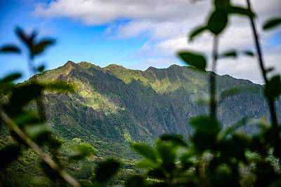 Photograph - Oahu Mountain View by Michael Scott
