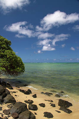 Photograph - Oahu's East Coast 5 by Debby Richards