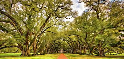 Oak Alley 6 - Paint Art Print