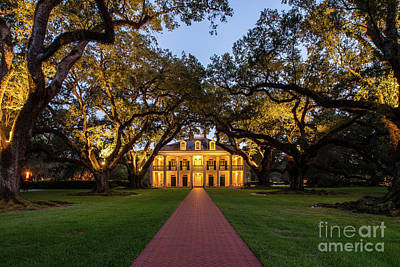 Oak Trees Photograph - Oak Alley After Dark by Tod and Cynthia Grubbs