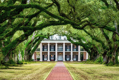 Photograph - Oak Alley Plantation by Andy Crawford