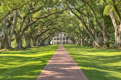 Photograph - Oak Alley Plantation by Jim Vallee