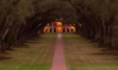 Photograph - Oak Alley Plantation by Jonas Wingfield