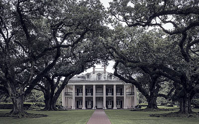 Southern Homes Photograph - Oak Alley Plantation - Louisiana by Daniel Hagerman