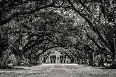 Plantations Photograph - Oak Alley In Black And White by Tod and Cynthia Grubbs