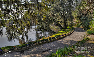 Train Photography - Oak and River Path by Aaron  Shortt