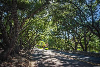 Photograph - Oak Arch Entrance To Santa Susana Park by Lynn Bauer
