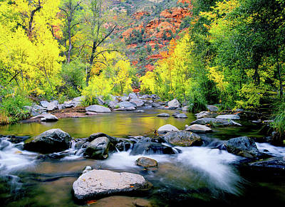 Photograph - Oak Creek Canyon by Frank Houck