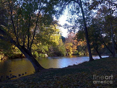 Photograph - Oak Creek Sedona Autumn by Marlene Rose Besso