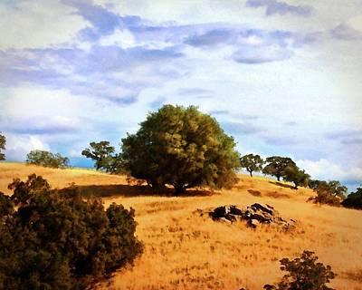 Photograph - Oak Grasslands by Timothy Bulone