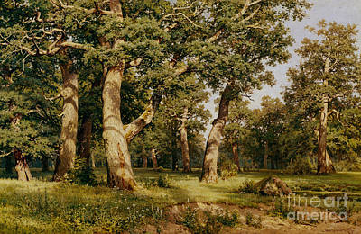 1887 Painting - Oak Grove by Ivan Ivanovich Shishkin