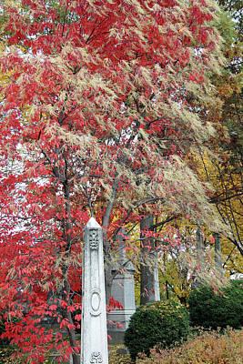 Photograph - Oak Hill Autumn by Cora Wandel