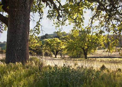 Digital Art - Oak Meadow by Sharon Foster