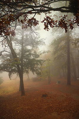 Photograph - Oak Run Morning Fog by Joyce Dickens