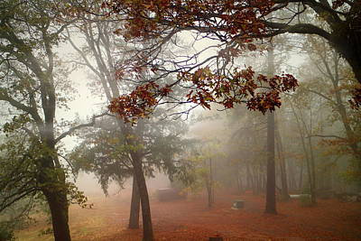 Photograph - Oak Run Morning Fog Two by Joyce Dickens