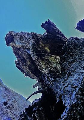 Photograph - Oak Stump by Harold Zimmer