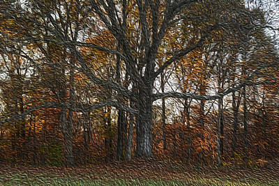 Photograph - Embracing Autumn by Wanda Brandon