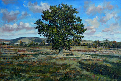 Oak Tree In The Vale Of Pewsey Art Print by Andrew Taylor