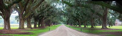 Artistic Photograph - Oak Tree Lane by J Darrell Hutto