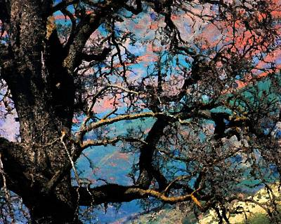 Photograph - Oaken Dreams by Timothy Bulone