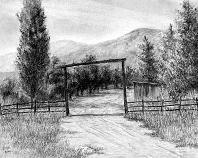 Pine Trees Drawing - Oakley Ranch Entrance by David King