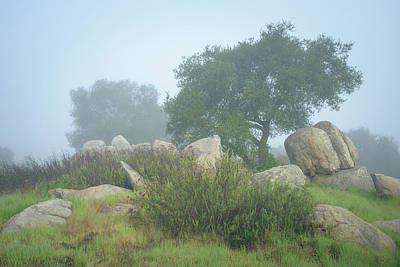 Photograph - Oaks And Boulders In Morning Fog by Alexander Kunz