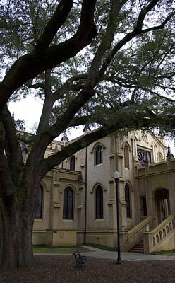 Nic Photograph - Oaks N Churches by Skip Willits