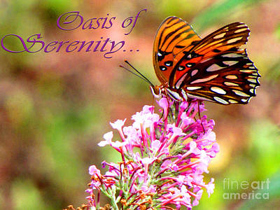 Oasis Of Serenity Print by Gardening Perfection